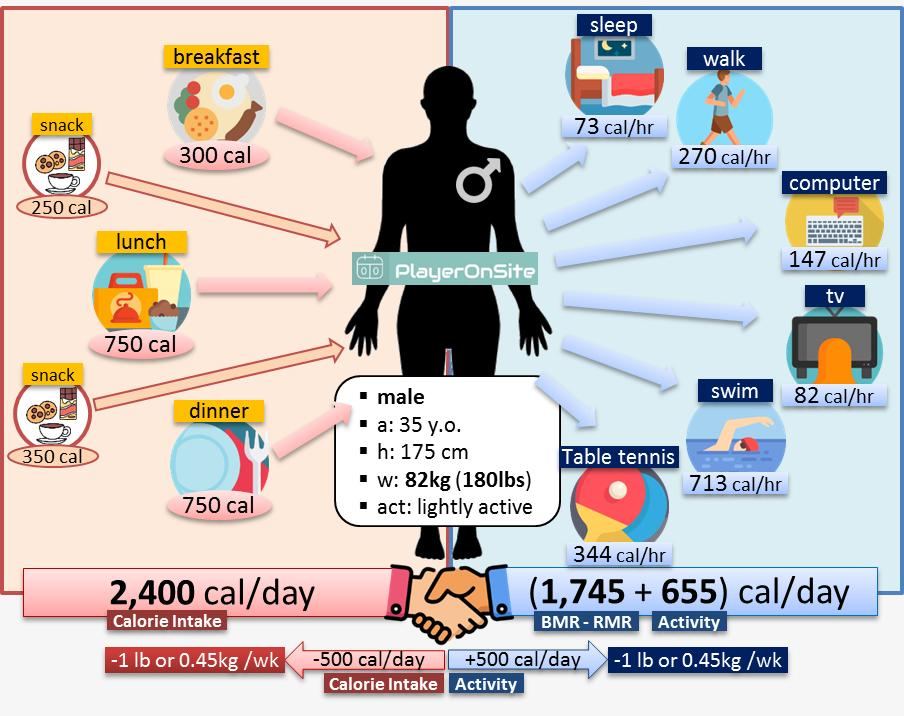 Case-3. 82kg Slightly Active Male