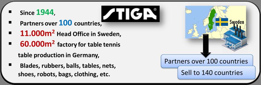 StigaOverview-PlayerOnSite