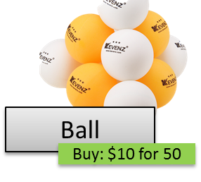 TableTennisCosts-Ball-PlayerOnSite