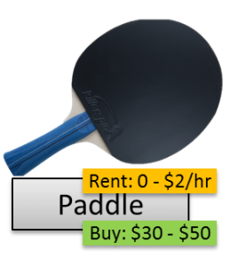 TableTennisCosts-Paddle-PlayerOnSite