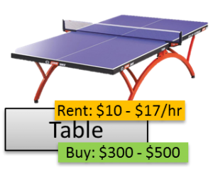 TableTennisCosts-Table-PlayerOnSite