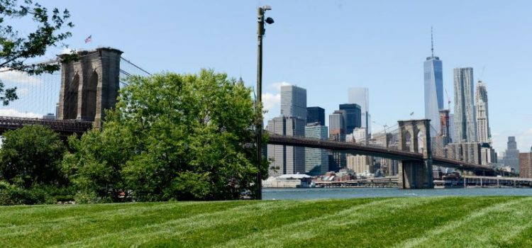 Brooklyn Bridge Park