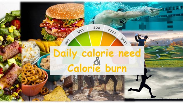 Daily calorie need and calorie burn of your body